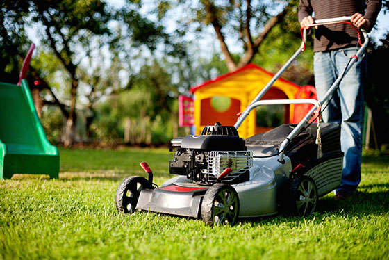 Which is better: A Rotary or Cylinder Lawn Mower